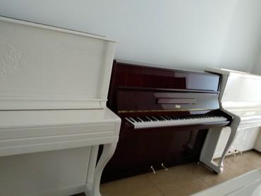 Bakı şəhərində Pianolar - Hissə-hissə ödəmək mümkündür!