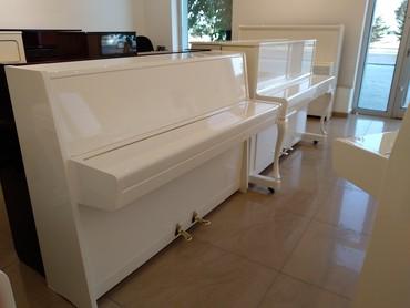 """Bakı şəhərində Специализированный магазин """"Piano Gallery"""""""